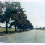 Melrose Dr 1973